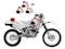 Komplet naklejek Blackbird Honda MC Original