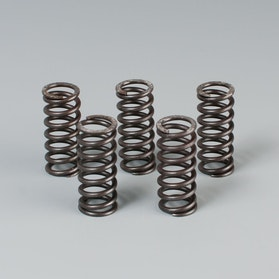DP Clutch Springs