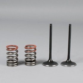 ProX Intake valves and spings kit