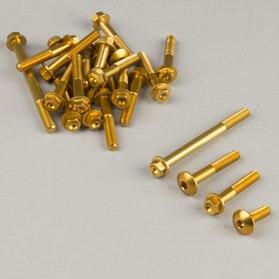 Komplet Śrub do Silnika Valtermoto Złoty
